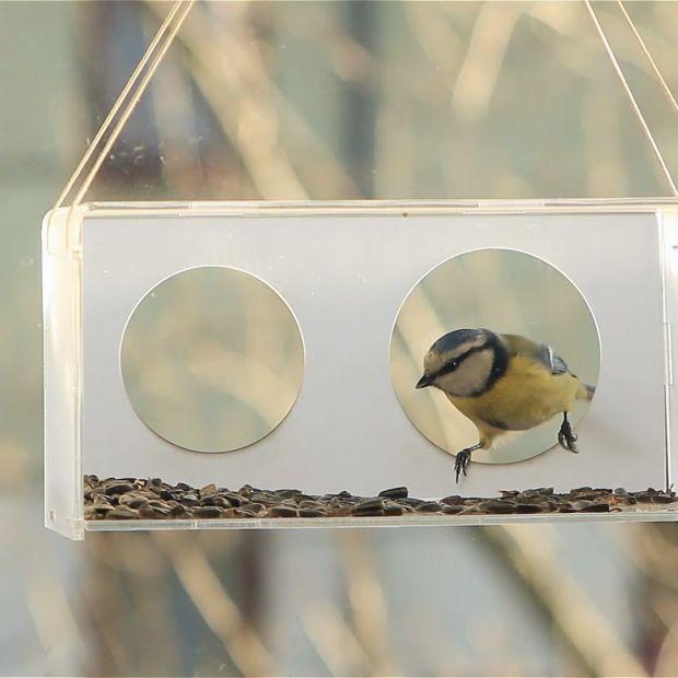 Ciekawe karmniki dla ptaków - zobacz je koniecznie