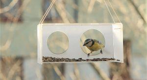 Późną jesienią i zimą ptaki często mają problem ze znalezieniem pożywienia, dlatego warto w swoim najbliższym otoczeniu umieścić karmnik. Świetnie sprawdzą się także domki, które mogą stać się ciepłym schronieniem podczas mroźnych dni