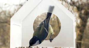 Jesień idzie, nie ma rady na to! Słowa Andrzeja Waligórskiego znów stają się aktualne. Już dziś warto pomyśleć o ptakach i zaopatrzyć się w oryginalny przydomowy karmnik, prosto od designera.