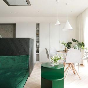 Przestrzeń kuchni jest równie reprezentacyjna jak salon, a jej zabudowa przypomina minimalistyczne rzeźby. Projekt: Aleksandra Pater-Bartnik. Fot. ArchOmega Studio
