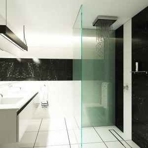 Nowoczesna łazienka - jak dobrać chemię budowlaną. Fot. Atlas