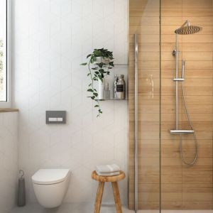 Deszczownia Arnika/Deante. Produkt zgłoszony do konkursu Dobry Design 2019.