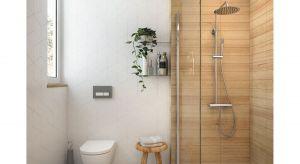 Deszczownia Arnika wyposażona jest w baterię mieszaczową o cylindrycznym kształcie, bezpośrednio nawiązującym do modnej stylistyki baterii termostatycznych. Produkt zgłoszony do konkursu Dobry Design 2019.