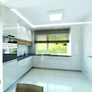 Obok kuchni zlokalizowano praktyczną spiżarkę, co pozwoli na ukrycie mniej reprezentacyjnych naczyń i sprzętów, niepożądanych w otwartej kuchni. Fot. Biuro Projektów MTM Styl