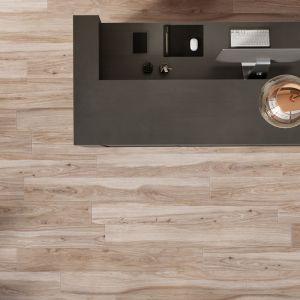 Płytki marki Ultime Concrete gris 160x80 & Kolekcja Acero sabbia 160x20. Fot. Cerrad