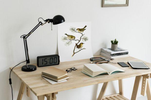 Jak wybrać ergonomiczne biurko dla dziecka i dorosłego?