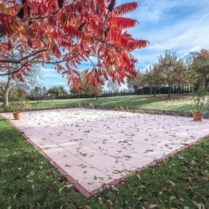 Niezbierane dostatecznie często liście, podobnie jak przejrzałe owoce, mogą uszkodzić murawę. Pozostawione na ogrodowych ścieżkach stanowią dodatkowe zagrożenie dla domowników, są bowiem mokre i śliskie. Fot. Dasag