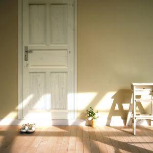 Drzwi marki Radex. Fot. 4iQ