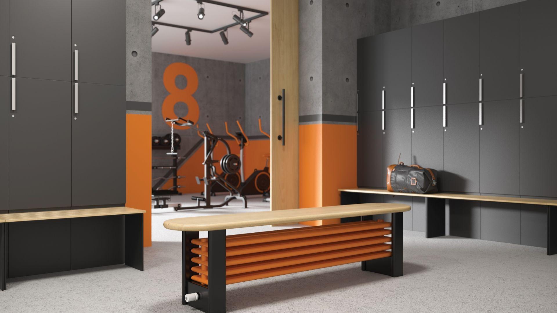 Grzejnik Delta Column Bench/Purmo. Produkt zgłoszony do konkursu Dobry Design 2019.