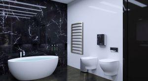 Kto z nas nie marzy o przestronnej łazience, z wielką wanną i klimatycznym wnętrzem. Wybór armatury łazienkowej, czy ceramiki powinien być dla nas ogromną przyjemnością. Producenci oferują wiele możliwości aranżacji.