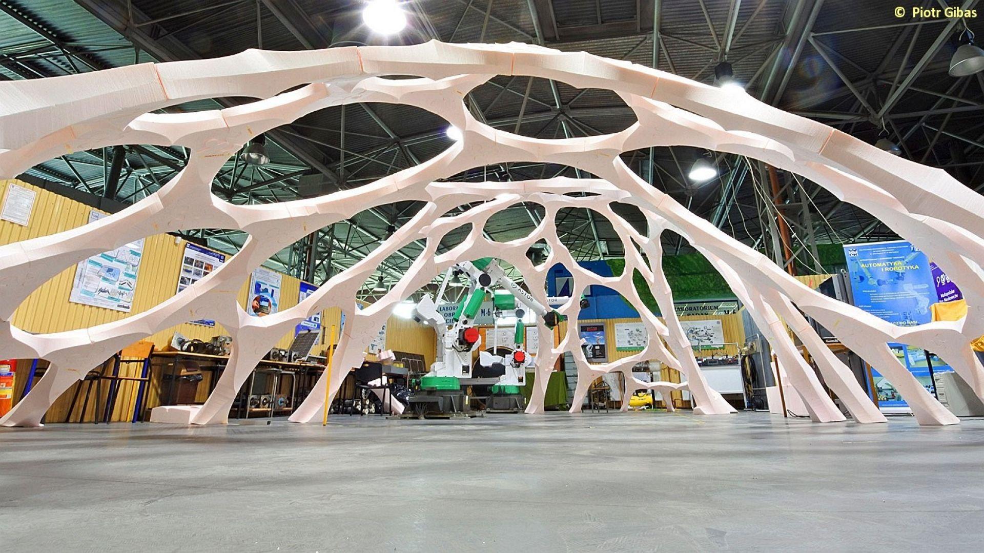 Architektoniczna konstrukcja przyszłości, fot. Piotr Gibas.jpg
