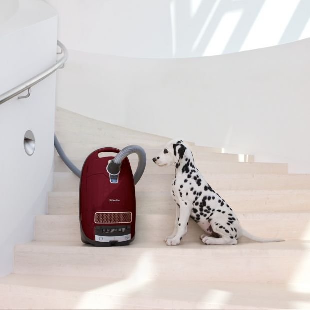 Sprzątanie w domu: zobacz nowoczesny odkurzacz