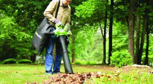 Jesień to najlepszy czas na ostatnie koszenie trawnika i sadzenie wielu roślin. Przed nadejściem zimy nie można zapomnieć o ściółkowaniu, nawożeniu i regularnym grabieniu.