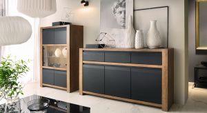 Ciemne meble to coraz bardziej popularny wybór do pokoju dziennego. Są zarówno eleganckie jak i nowoczesne i taki właśnie styl nadają aranżacji salonu.