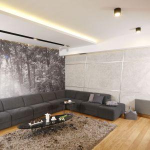 Oświetlenie LED w salonie. Projekt: Monika i Adam Bronikowscy. Fot. Bartosz Jarosz