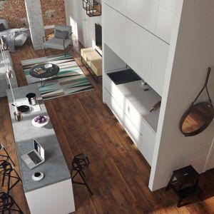 Kuchnia w stylu loft. Projekt i zdjęcia: Nowa Papiernia