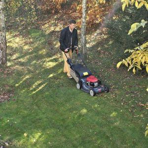 Sprzątanie liści jesienią - kosiarka Honda HRX. Fot. Honda