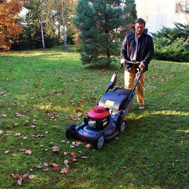 Porządki w ogrodzie - szybki sposób na sprzątanie liści