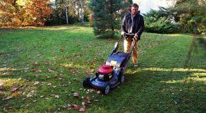 """Jesienna pora dla ogrodników, działkowców, właścicieli posesji i profesjonalistów zajmujących się pielęgnacją zieleni oznacza przede wszystkim """"wielkie sprzątanie""""."""