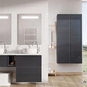 Kolekcja mebli łazienkowych Spot/Elita. Produkt zgłoszony do konkursu Dobry Design 2019.