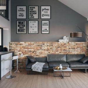 Ściany wykończone cegłą sprawdzą się w tradycyjnym, jak również nowoczesnym, loftowym wnętrzu. Możemy w ten sposób udekorować całą ścianę lub wybrany jej fragment. Kolekcja płytek Piatto terra. Fot. Cerrad