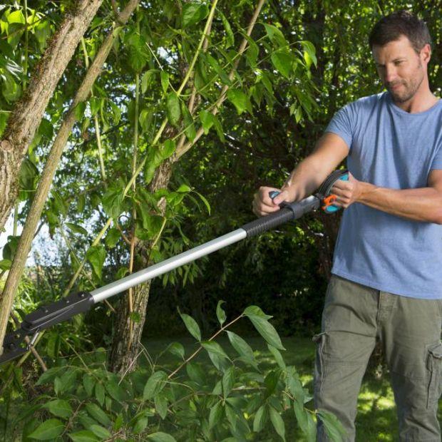 Ogród jesienią - łatwe przycinanie drzewek i krzewów