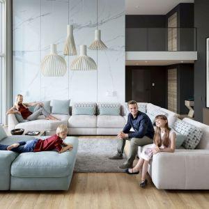 Sofa to nieodzowny element wyposażenia każdego salonu. Fot. Gala Collezione