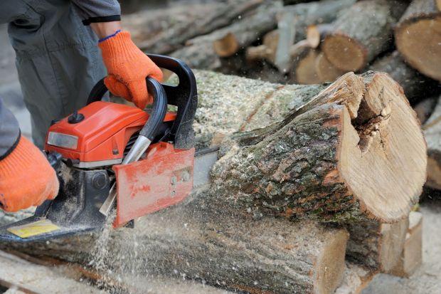 Odpowiednie przygotowanie ogrodu na zimęwiąże się m.in. z przycinaniem gałęzi i przygotowaniem drewna na opał. Prace te może znacząco ułatwić pilarka łańcuchowa. Podpowiadamy na co zwrócić uwagę przy jej wyborze i jak wybrać tę, która
