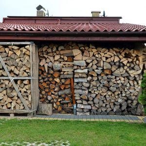 Przycinanie gałęzi i przygotowanie drewna na opał to zadania, które znacząco ułatwi pilarka łańcuchowa. Fot. materiały prasowe Krysiak