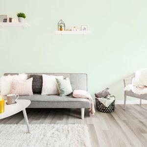Nowa farba marki Magnat Ceramic Care dba o użytkowników, oczyszczając powietrze z formaldehydu. Fot. Magnat