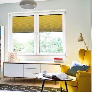 W poszukiwaniu ciekawych okiennych osłon, które staną się dekoracyjnym akcentem, warto zwrócić uwagę na plisy. Fot. Anwis