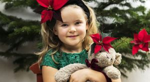 Dzięki zachwycającemu bogactwu kolorów, poinsecja daje niezliczone możliwości dla tworzenia różnorodnych, kreatywnych bożonarodzeniowych dekoracji.