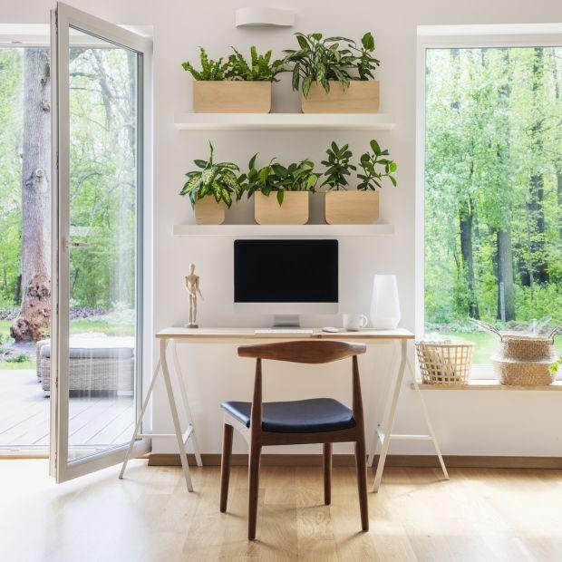 Domowe biuro - pamiętaj o dobrym oświetleniu