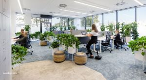 Biura zaprojektowane w zgodzie z naturą i wyposażone w elementy naturalnej zieleni pozytywnie oddziałują na pracowników. Architekci i projektanci coraz częściej uwzględniają zieleń jako integralną część całej koncepcji wystroju. Projektanci