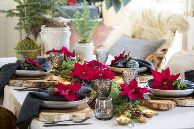 Stół na święta: zobacz dekoracje z gwiazdą betlejemską