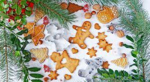 Boże Narodzenie zbliża się wielkimi krokami a wraz z nim niepowtarzalny klimat, jaki niosą ze sobą te najbardziej rodzinne Święta w roku.