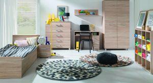Dopasowane do stylu życia i upodobań, umożliwiające dowolne kreowanie przestrzeni, funkcjonalne i modne – takie powinny być idealne meble do pokoju dziecięcego lub młodzieżowego.