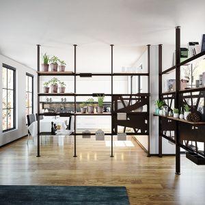 Giostra to system półek i stelaży, dzięki którym można dowolnie podzielić przestrzeń salonu. Fot. Center-Mebel