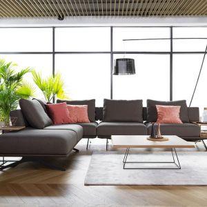 Living Coral we wnętrzach - Sofa Mystic. Fot. Olta