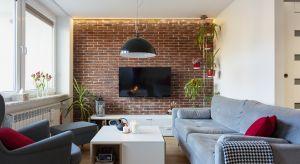 To niedużemieszkanie na warszawskiej Woliprzeszło gruntowny remont. Zmieniło się w nim dosłownie wszystko. Projektantka idealnie dopasowała wnętrze do potrzeb dwójki inwestorów i ichpupila Yorka o imieniu Lex.