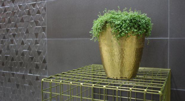 Płytki ceramiczne. Zobacz nowości prosto z Hiszpanii