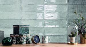 Ciepłe kolory, inspiracje naturą, zwłaszcza kamieniem i małe formatybędą wyznaczać trendy w designie płytek ceramicznych w 2019 roku. Zobaczcie ciekawe kolekcje łazienkowe!