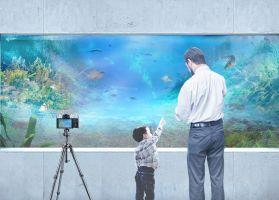 Akwarium kąpielowe pozwala obserwować naturalną florę i faunę z wnętrza domu. Przede wszystkim kreuje unikalną przestrzeń garażu i domowego SPA otwartego na podwodny świat. Projekt i wizualizacja: BXBstudio