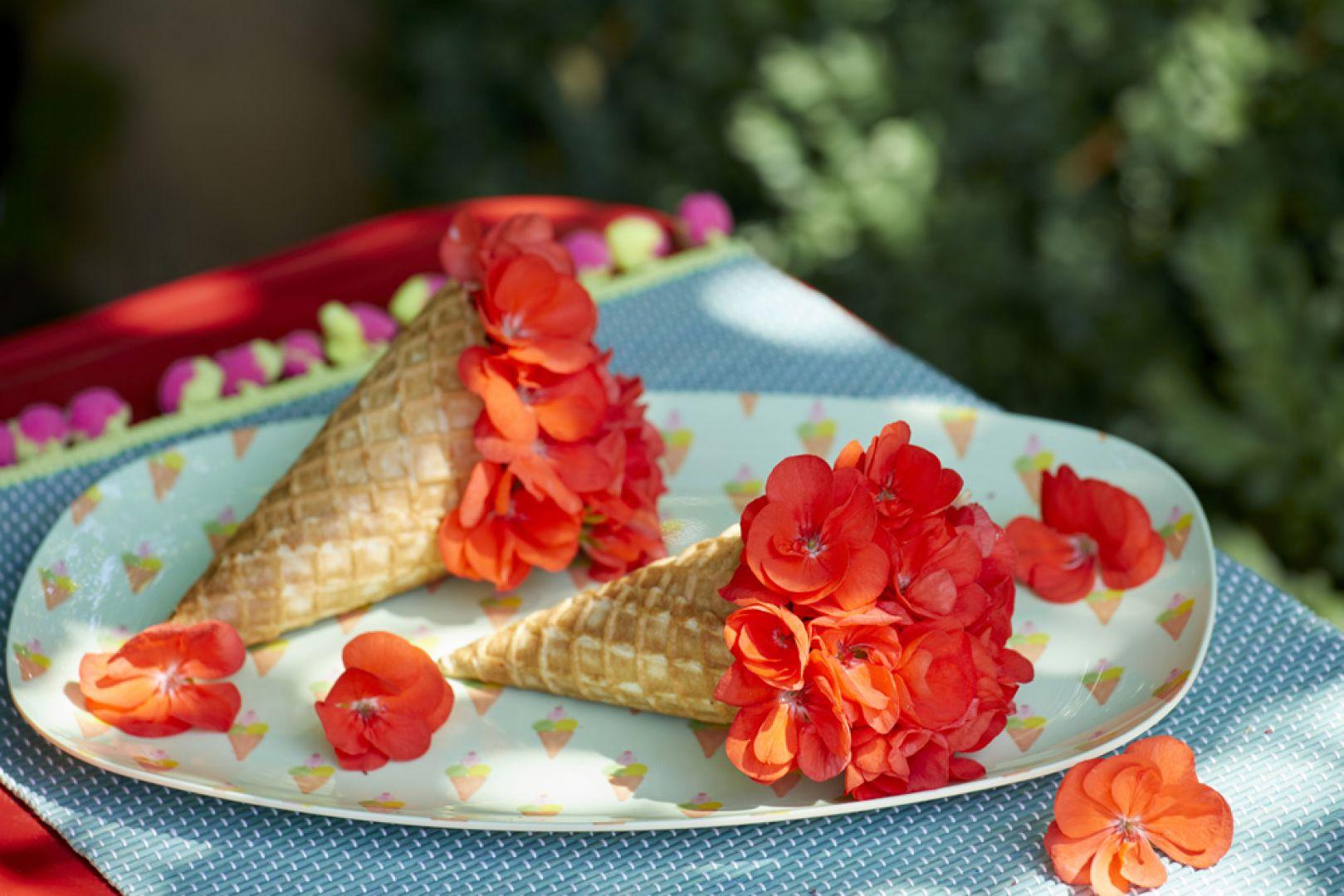 Odpowiednio pielęgnowane pelargonie będą obficie kwitły na balkonie i w ogrodzie od wiosny aż do jesieni. Fot. Pelargonium for Europe