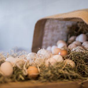 Wielkanoc – nieszablonowe pomysły na świąteczną aranżację wnętrz. Fot. Kodo