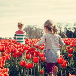 Wiosna to dobry czas na zmiany. Fot. mat. prasowe