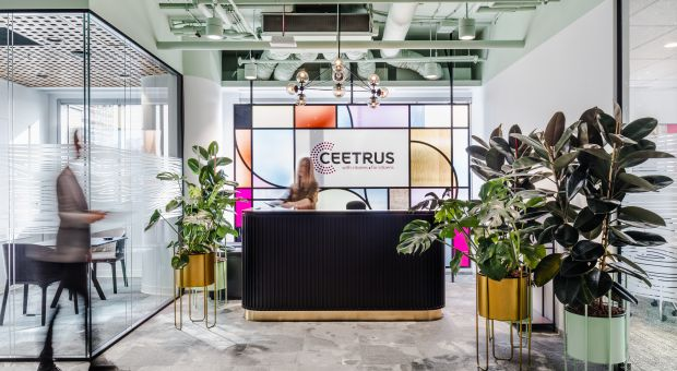 Biznesowy wizerunek i przyjacielska atmosfera - zobacz nowe biuro Ceetrus