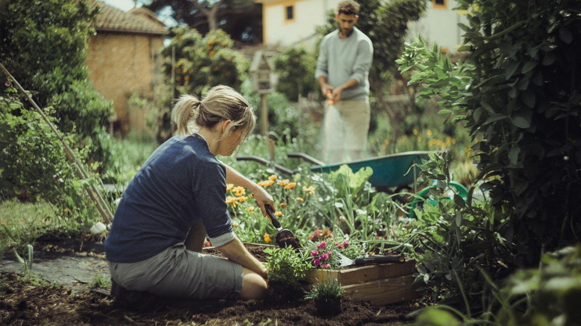 Zakładanie rabat kwiatowych. Fot. Fiskars
