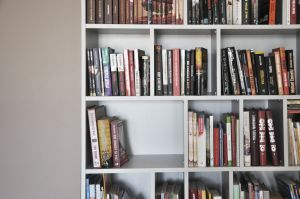 Domowa biblioteczka w salonie. Projekt i zdjęcia: Dominika Wojciechowska (NIDUS Interiors)