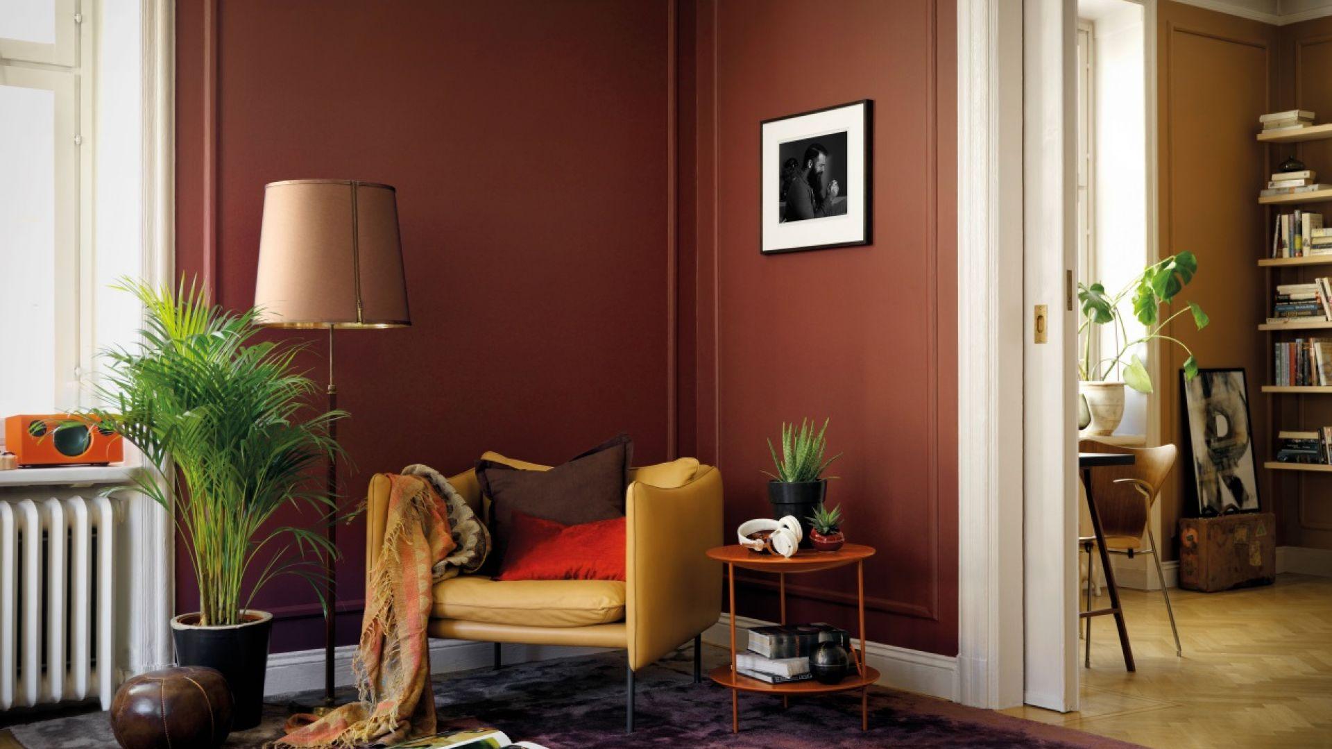 Farba Beckers Designer Colour, kolory Cherry, Luna. Fot. Beckers